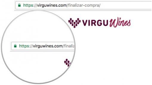 Virgu Wines com certificado de segurança